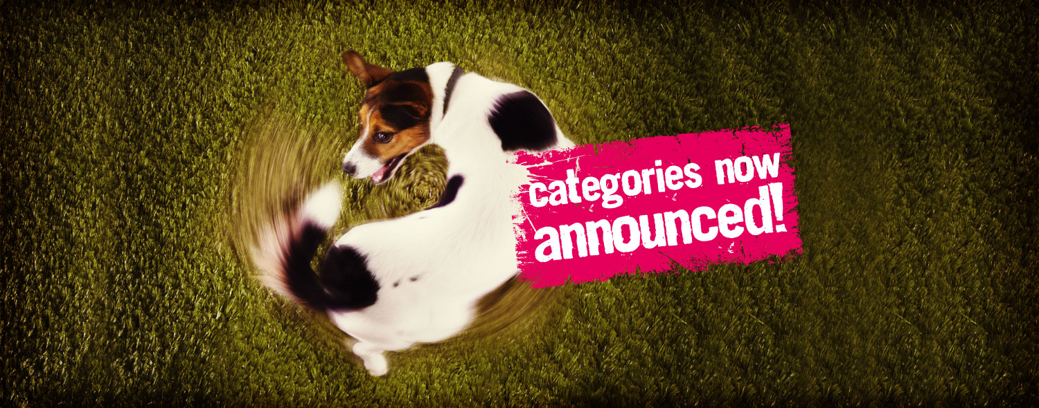 Categories now announced!